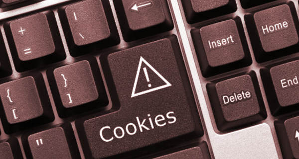 cookies-no-computador-navegacao-privacidade-firefox-chrome-internet-explorer-edge-windows-conserto-seu-notebook-resolve-micro